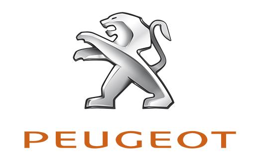 Peugeot Repair at Maximotors
