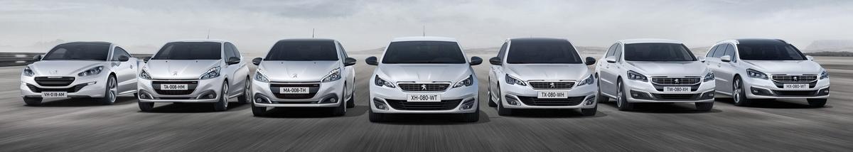 Ремонт и обслуживание двигателей Peugeot